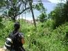 Trekking Bonete - Ubatuba