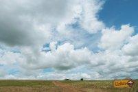 Plantação de Soja na estrada para o Canyon Jaguaricatu - Senges-PR - Vale do Itararé