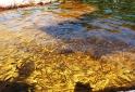 peixes-paraiso-perdido-minas-gerais