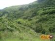 campo-verde-na-trilha-da-cachoeira-da-conquista-itamonte