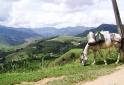Vista do Bairro Campo Grande Itamonte - MG