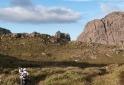 Asa de Hermes - Parque Nacional do Itatiaia