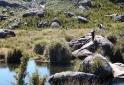 Usina Hidreletrica - Parque Nacional do Itatiaia