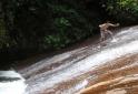 Ilhabela Cachoeira da Lage