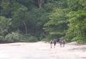 mochilierios-na-praia-deserta-ubatuba-sp